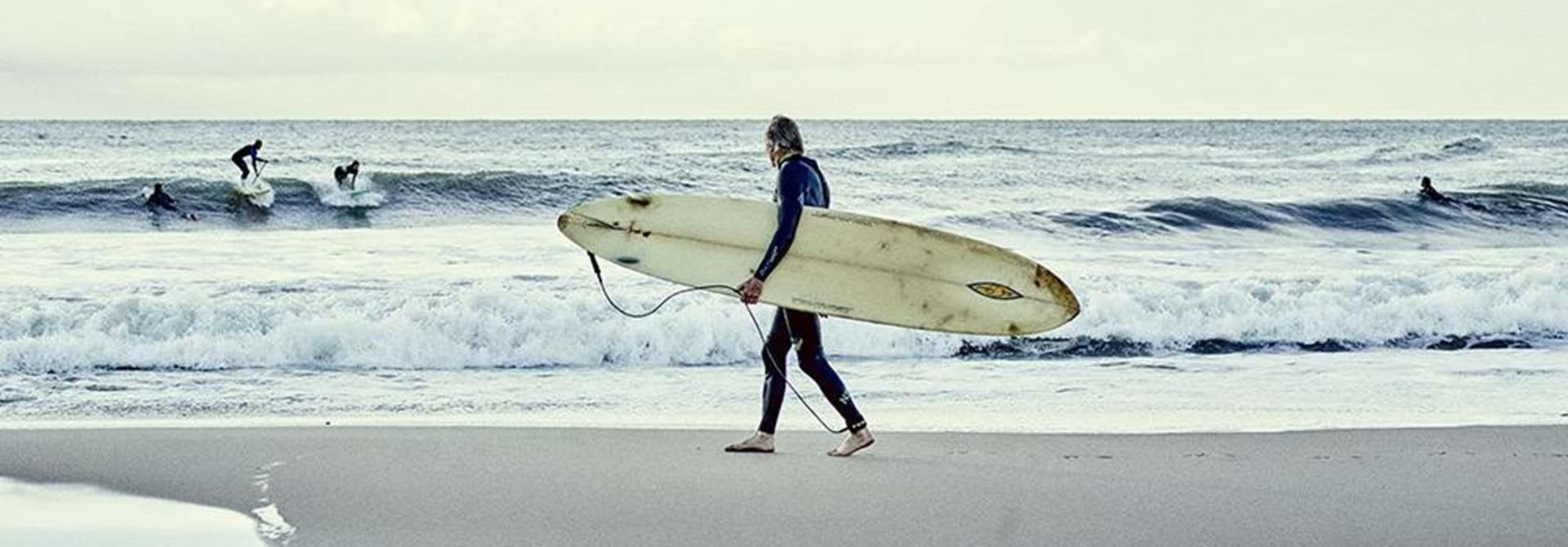 Surf Web