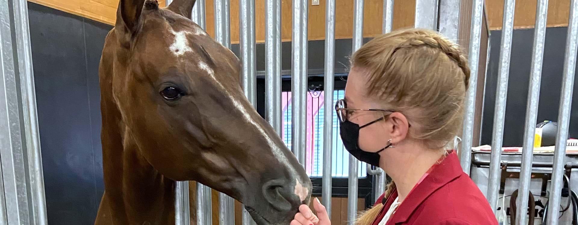 Caroline Og Hest